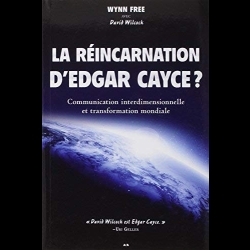 La réincarnation d'Edgar Cayce ? - Communication interdimensionnelle David Wilcock